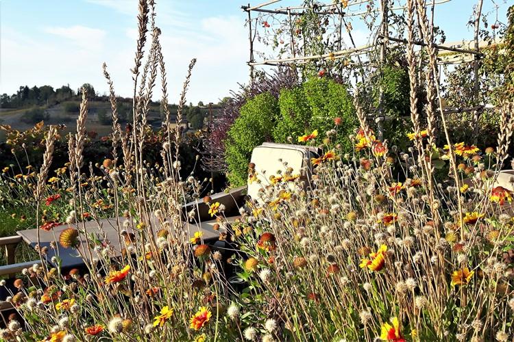 Garden spleandor