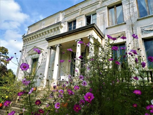 M Antoinettes garden